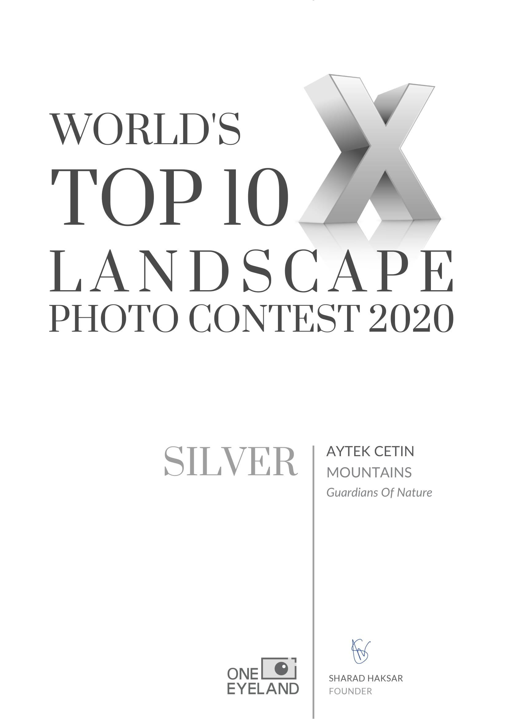 aytek-cetin-silver-landscape-mountains-2020-1